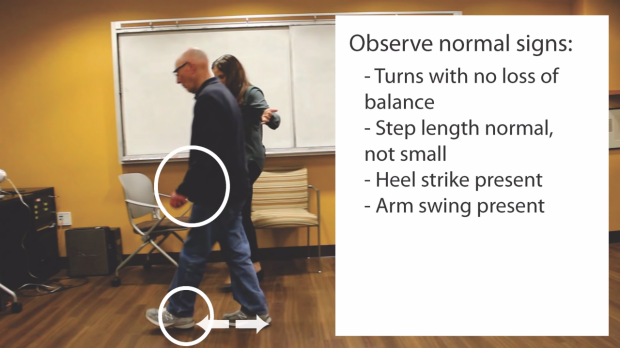 Observe for arm swinging, step length and heel strike.